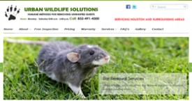 Wildlife Removal Company