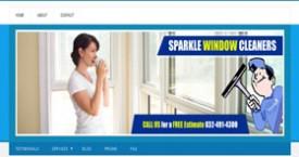 Window Washing Company